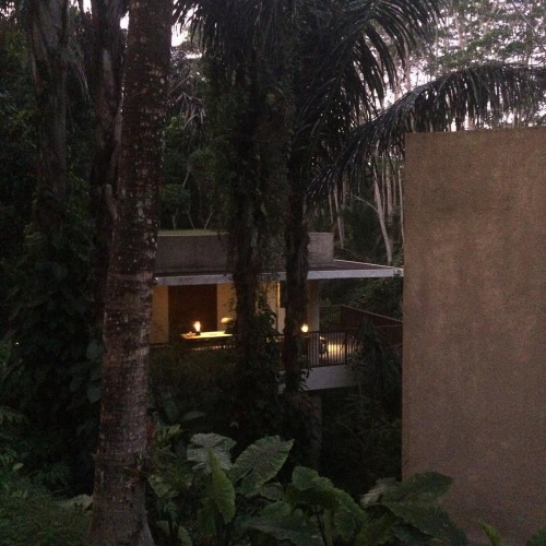 My crib for two days in Ubud.