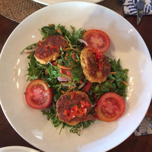 Biku's fish cake salad is seriously yummy!