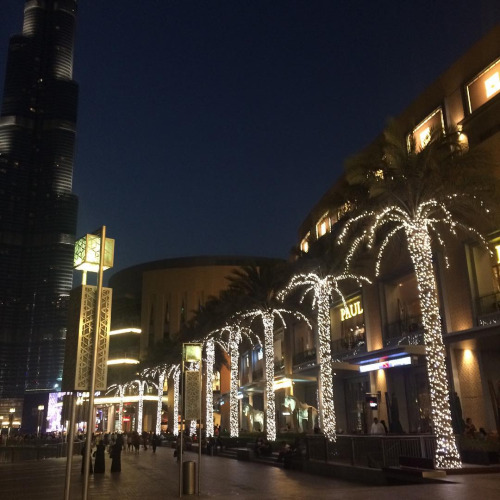 Welcome to the Dubai Mall, the shopper's paradise.