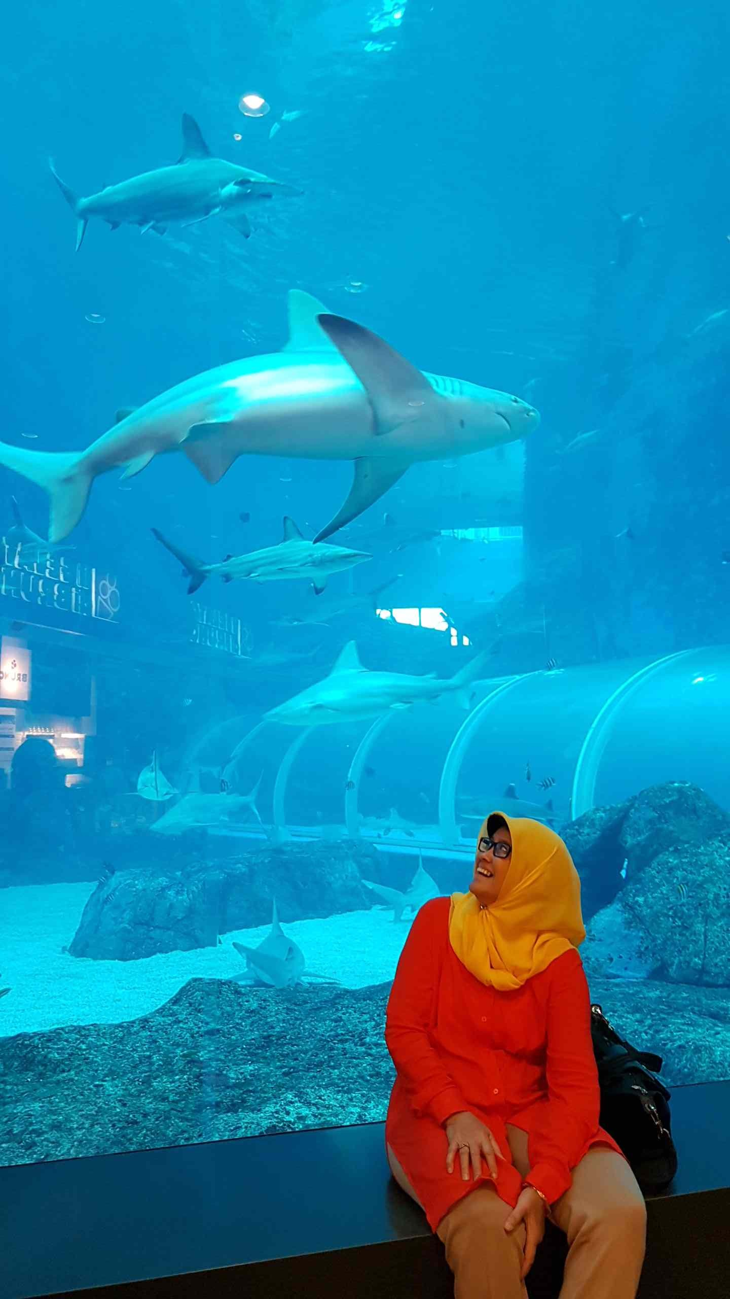 My mom with the sharks